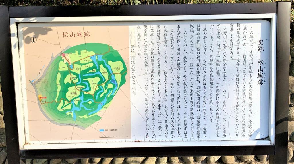 松山城(武蔵国)